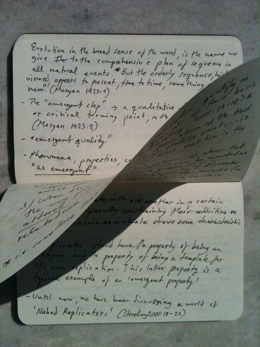 Den Emergenta texten, pigmenttryck 40 x 30 cm, 2010